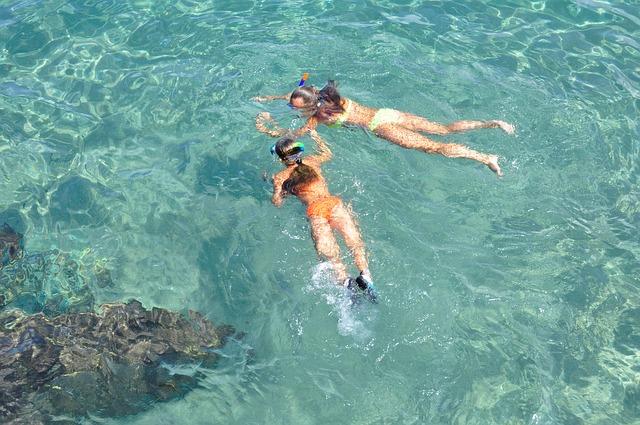 snorkel-2